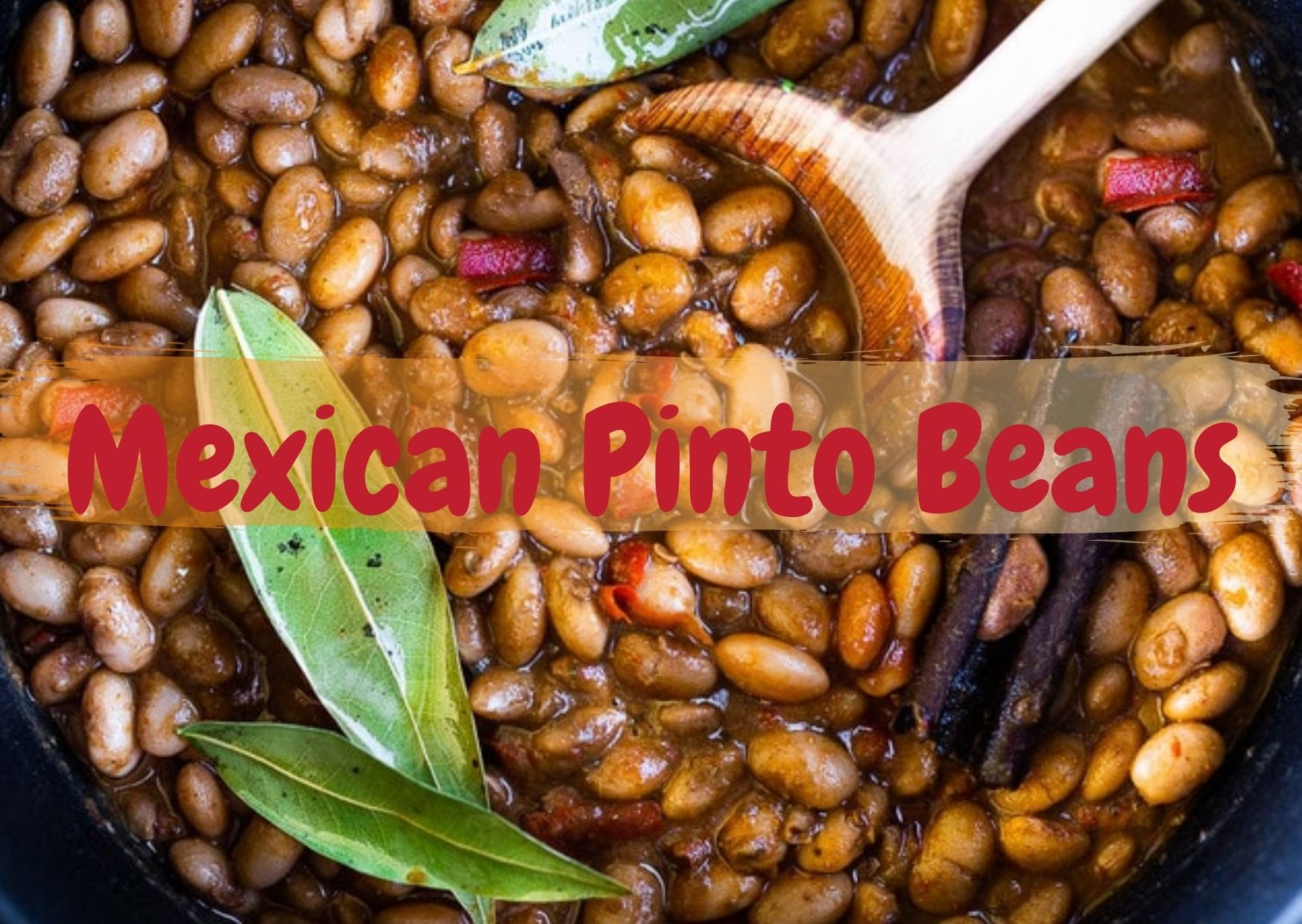 Mexican Pinto Beans2